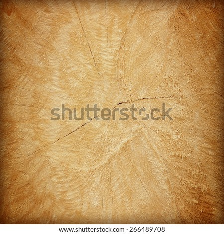 Cut of old trunk is photographed closely. The core of tree consist of growth rings and deep cracks - stock photo