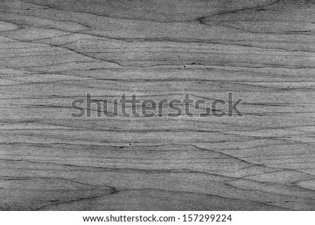 Cut of the old dried wood - stock photo