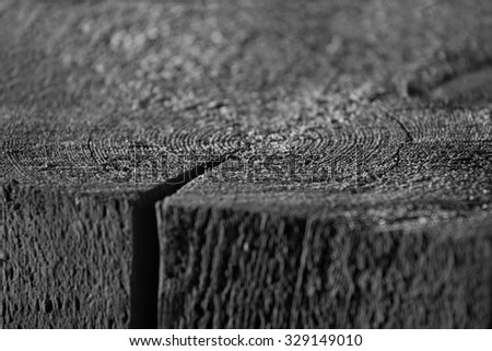 Cut of wooden log. surface - stock photo