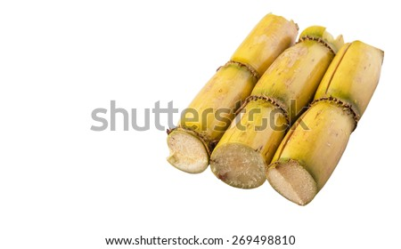 Cut sugarcane stalks over white background