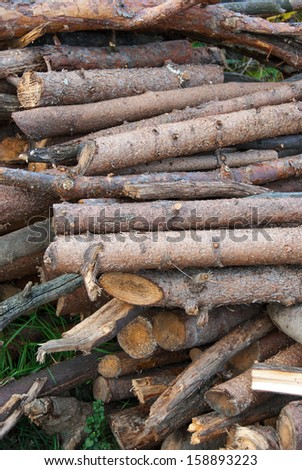 Cut trunks stacked in a pile, ready to burn.