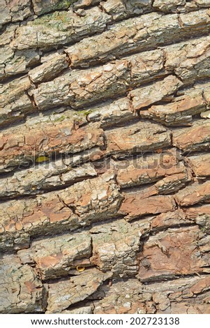 Cut Wood as Renewable Resource of Energy with Textured Bark Composition - stock photo