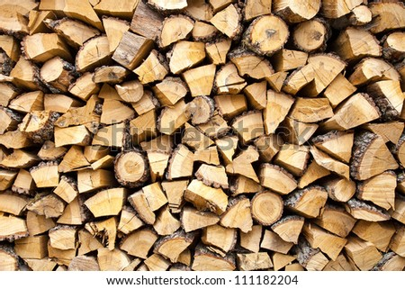 Cut wood to burn in the fireplace