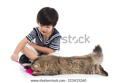 Cute asian boy playing with tabby kitten on white background isolated