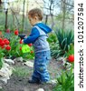 cute baby boy irrigating flowers in colorful garden - stock photo