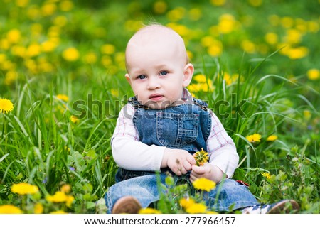 Cute baby boy sitting on a lawn with dandelions summertime