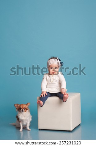 Cute baby girl sitting on chair with little dog in room over blue. Wearing trendy clothes. Looking at camera. Childhood. Friendship. Togetherness. - stock photo