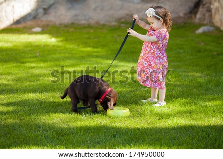 Cute baby girl spending time with her dog at a park on a sunny day