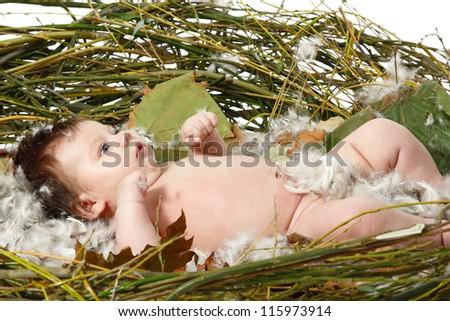cute baby in home nest, beautiful Christmas kid, studio shot over white - stock photo