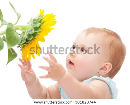 Cute baby with sunflower isolated on white background, adorable curious little girl exploring big yellow flower - stock photo
