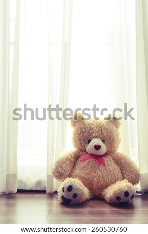 Cute bear's sitting in living room - stock photo