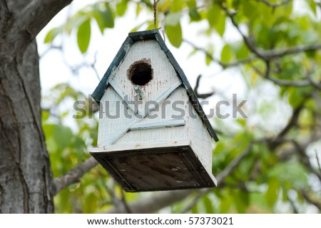 cute bird house against green leaves - stock photo