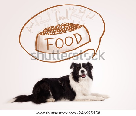 Cute black and white border collie thinking about a bowl of food in a thought bubble above her head - stock photo