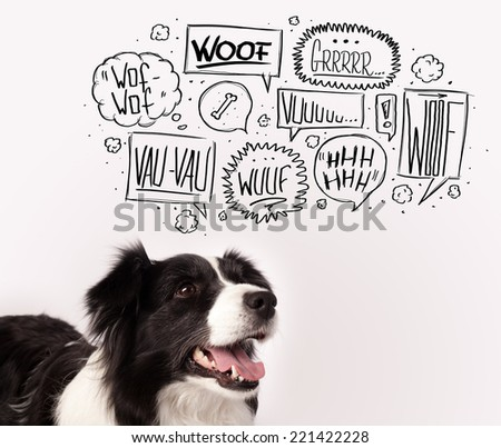 Cute black and white border collie with barking speech bubbles above her head - stock photo