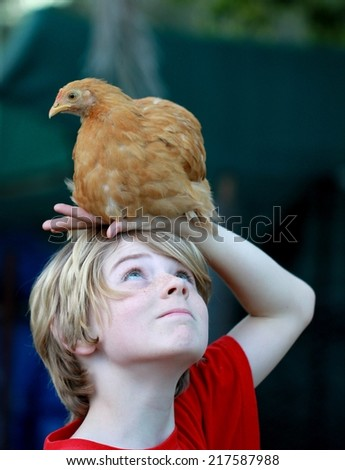 Cute boy child and his pet chicken