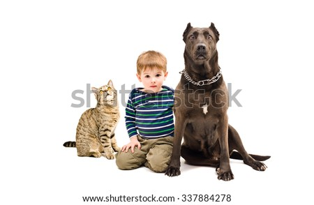 Cute boy, dog and cat sitting together isolated on white background - stock photo