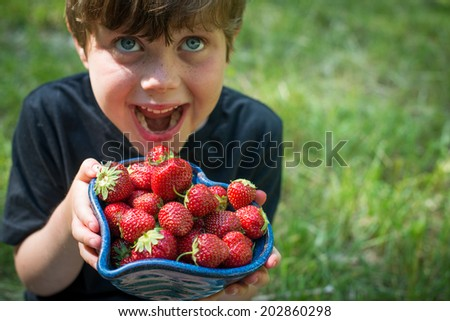 Cute boy eats juicy, delicious, fresh ripe strawberries - stock photo