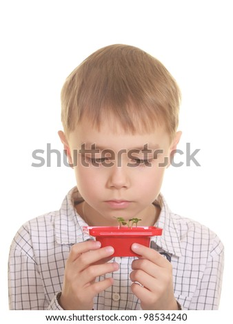 Cute boy looking on new plant. Isolated on white - stock photo