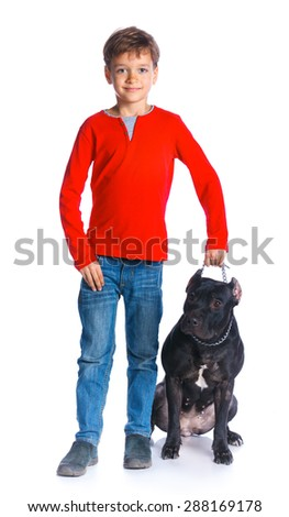 Cute boy standing with his Pit Bull Terrier smiling at camera on isolated white background - stock photo