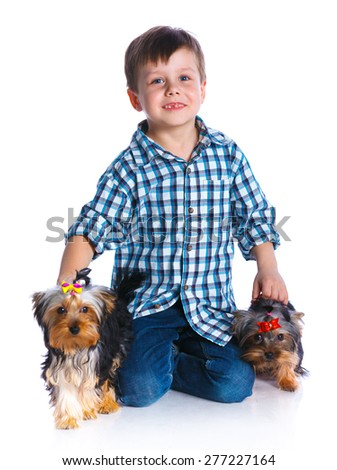 Cute boy with his two Yorkshire terriers smiling at camera on isolated white background - stock photo