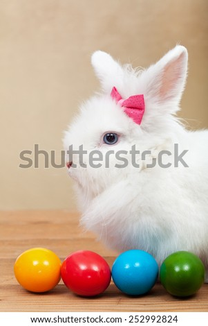 Cute bunny with colorful easter eggs on golden background - shallow depth of field - stock photo