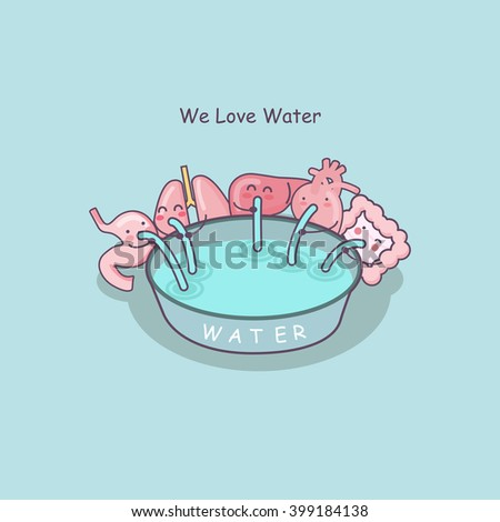 cute cartoon organs include stomach,lung,liver,heart and intestine love water, great for health care concept - stock photo