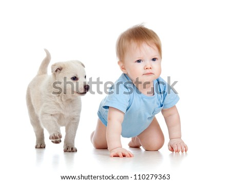 cute child boy and dog puppy playing and crawling