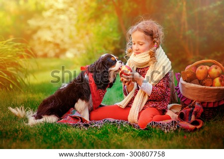 cute child girl playing with her cavalier king charles spaniel dog in autumn sunny garden and giving apple to him - stock photo