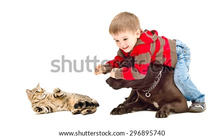 Cute child protects cat from the dog isolated on a white background - stock photo