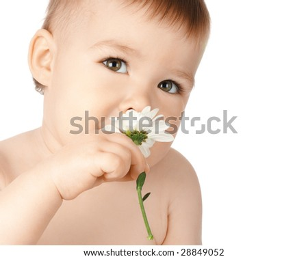 Cute child smelling daisy, isolated over white - stock photo