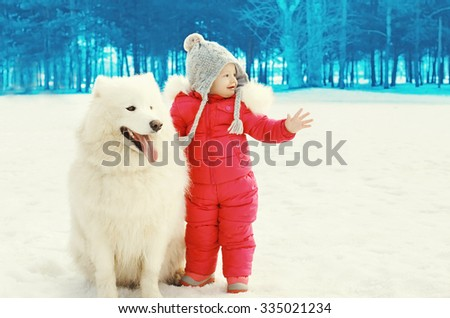 Cute child with white Samoyed dog on snow walking in winter day - stock photo