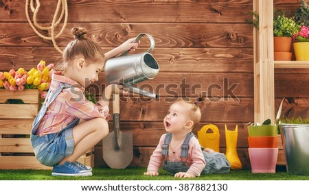 Cute children girls caring for her plants. Sisters watered flowers in pots. Spring concept, nature and care. Two little girls gardening in the backyard. - stock photo