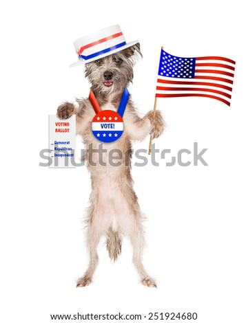 Cute dog wearing politician hat and vote button holding American flag and voting ballot - stock photo