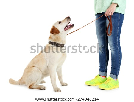 Cute dog with girl isolated on white background - stock photo