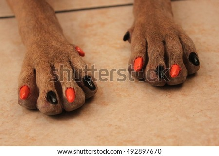 Cute dog with nails painted Halloween colors