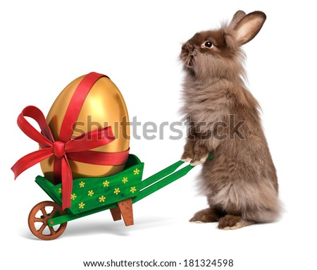Cute Easter bunny rabbit with a little green wheelbarrow and a golden Easter egg with a red ribbon, isolated on white, CG and photo - stock photo
