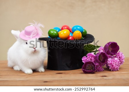 Cute easter bunny with spring flowers and colorful eggs in magician hat-shallow depth of field - stock photo