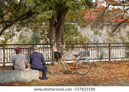 Cute elderly couple relaxing in autumn park