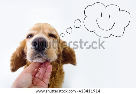 Cute English Cocker Spaniel puppy and petting hand in front of a white background with comic style speech bubble sketch - stock photo