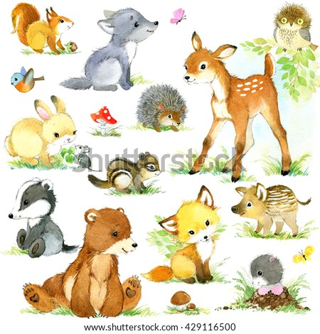Cute forest animals set. Cartoon animals. animal illustration. Forest animal. Mole. Fox. Mouse. Rabbit. Hedgehog. Deer. Owl. Wolf. Boar. Squirrel. Chipmunk.