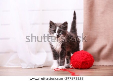 Cute gray kitten plays with threads for knitting on floor at home - stock photo