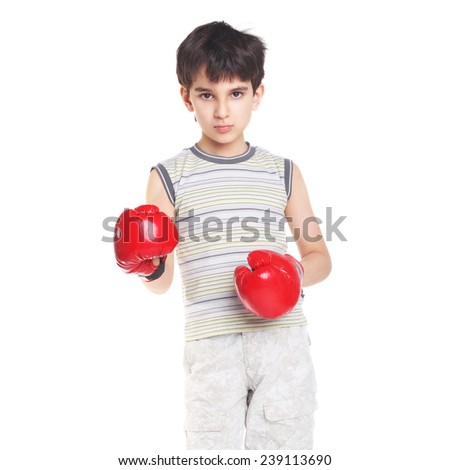 cute handsome little boxer closeup isolated on white - stock photo