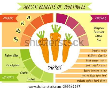 Cute infographic page of Health Benefits of Carrot like vitamins, minerals, nutrients