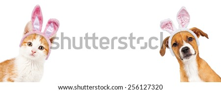 Cute kitten and puppy wearing Easter bunny ears peeking out from the side of a white banner with room for text - stock photo