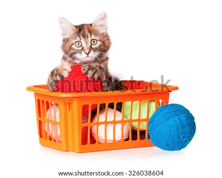 Cute kitten with clews of thread, isolated on white background  - stock photo