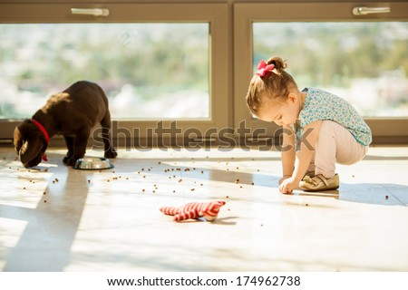 Cute Labrador puppy making a mess with his food while a little girl helps him pick it up - stock photo