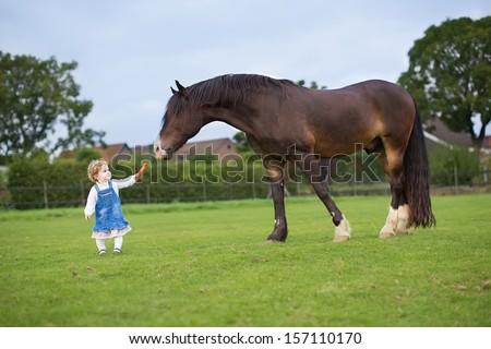 Cute little baby girl feeding a big horse on a ranch in autumn - stock photo