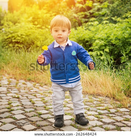 Cute little blond Caucasian toddler boy in blue cardigan standing in park holding dandelion on sunny spring day. Closeup portrait, retouched, no filter, square format. - stock photo