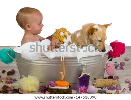 Cute little blond girl having fun bathing with her dog in a metal bathtub filled with soapy bubbles as she lovingly rinses the golden jack russel terrier off with a sponge - stock photo