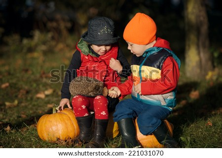 cute little boy and girl playing with hedgehog - stock photo